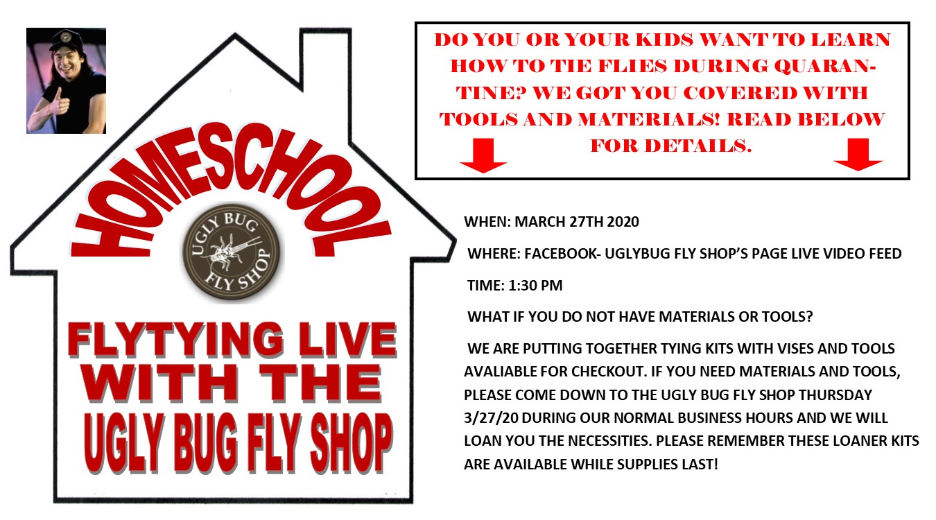Get home schooled with the Ugly Bug Fly Shop Via Facebook live!